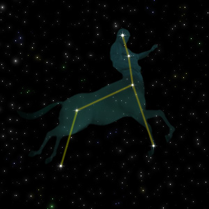 Constellation of the Centaur